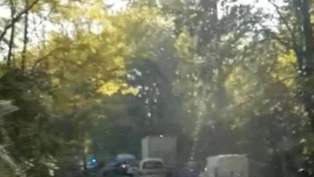 incidente stradale caprara strada provinciale 23 (2)-2