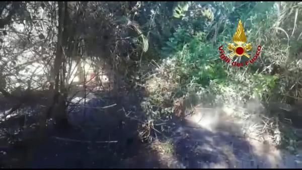 [VIDEO] Nuovo incendio nella pineta dannunziana di Pescara, altri roghi anche in provincia