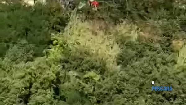 VIDEO | I vigili del fuoco recuperano con l'elicottero il corpo dell'uomo precipitato dal ponte