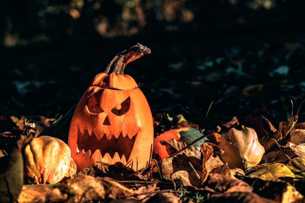 Cosa Vuol Dire Halloween.Halloween Storia Origini Curiosita Giochi E Addobbi